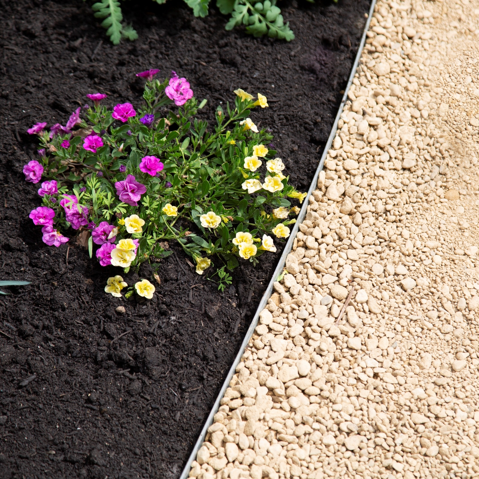 Flower Bed Maintenance Cost: Metal Path Edging